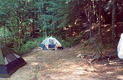 Camping in the Sipsey Wilderness